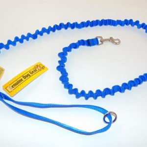 Bungee Leash Small
