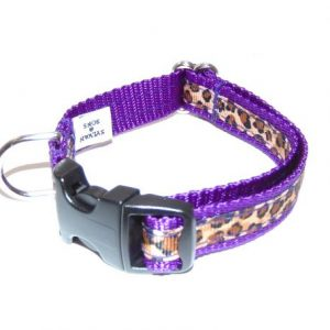 Royal Leopard Cat Collar