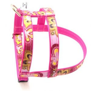 Crazy Dazie Carnation Dog Harness