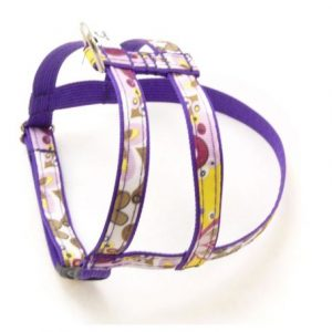 Crazy Dazie Petunia Dog Harness