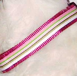 Retro Pink Peppermint Martingale Dog Collars