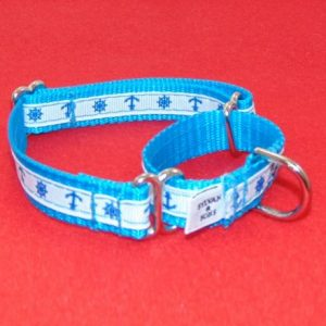 Bahama Sky Martingale Dog Collar