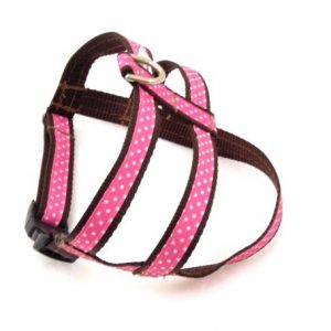 Chocolate Cherry Dog Harness