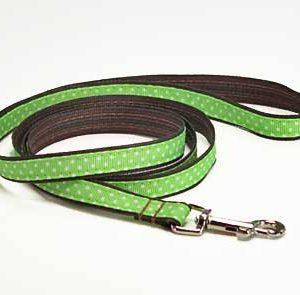 Key Lime Chocolate Dog Leash