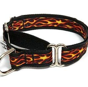 Hot Stuff Martingale Dog Collars