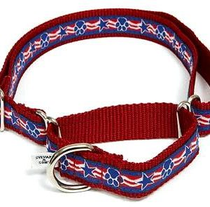 Stars & Paws Martingale Dog Collars