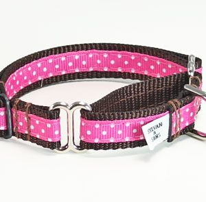 Chocolate Cherry Martingale Collar