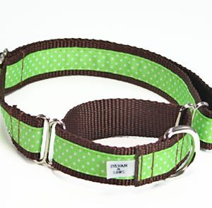 Key Lime Chocolate Martingale