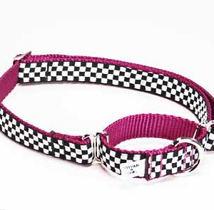 Speedway Pink Sports Car Martingale