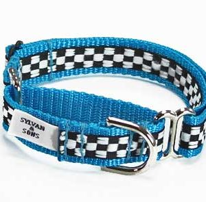 Speedway GT Turquoise Martingale