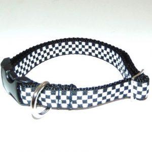 Speedway Dog Collar