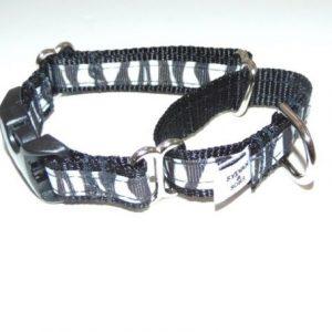 Midnight Zebra Buckle Martingale Dog Collar
