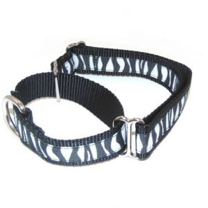 Midnight Zebra Martingale Dog Collar