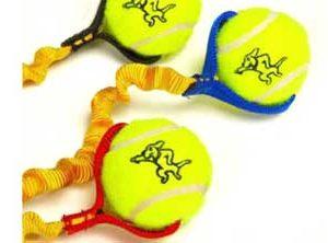 Tennis Ball Toys