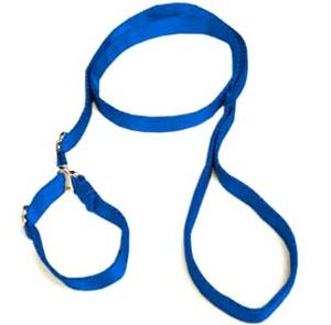 Super-Soft Blue Premium Slip Leash