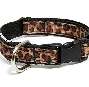 Safari Nights Cheetah Breakaway Cat Collar