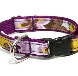 Crazy Dazie Petunia Safety Cat Collars