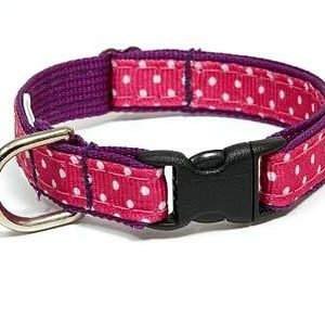 Sunrise Polka Dot Pink Safety Cat Collars