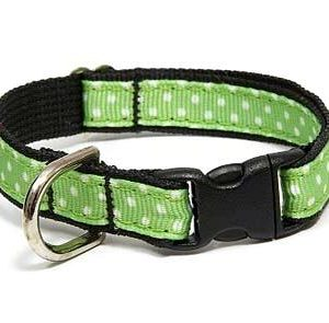 Margarita Polka Dot Breakaway Cat Collars