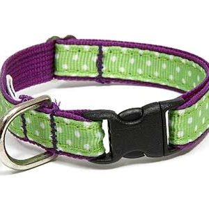 Sandcastle Polka Dot Safety Cat Collar