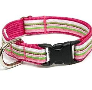Retro Pink Peppermint Safety Cat Collar