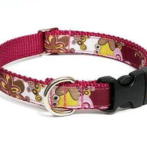 Crazy Dazie Carnation Pink Dog Collar