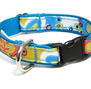 Crazy Dazie Periwinkle Dog Collar