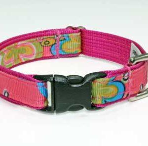 Caribbean Coral Pink Dog Collar
