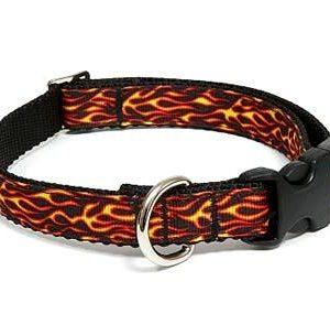 Hot Stuff Dog Collar
