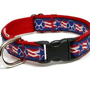 Stars & Paws Dog Collar