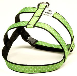 Margarita Polka Dot Dog Harnesses