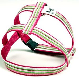 Retro Pink Peppermint Dog Harnesses
