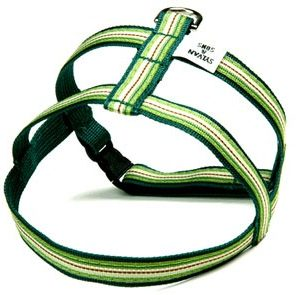 Retro Wintergreen Mint Dog Harnesses