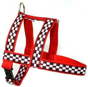 Motor Speedway Red Dog Harnesses