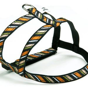 Wall Street Stripe Dog Harnesses