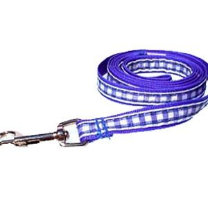 Blue Gingham Leashes