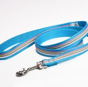 Turquoise Riviera Dog Leash