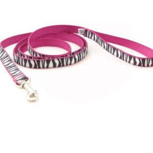 Blushing Zebra Leash