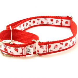 Red Ladybug Designer Martingale Collar