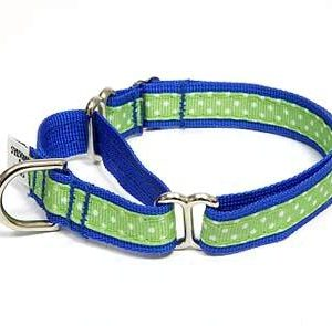 Beach Ball Polka Dot Martingale Dog Collars