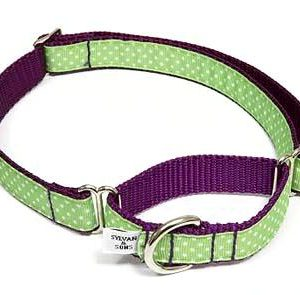 Sandcastle Polka Dot Martingale Dog Collars
