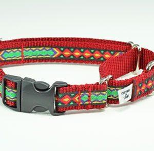 Rasta Mon Buckle Martingale Dog Collar