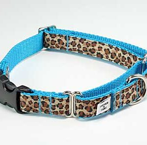 Turquoise Leopard Buckle Martingale Dog Collar