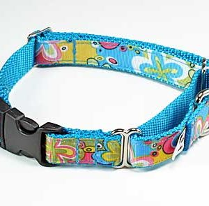 Crazy Dazie Periwinkle Buckle Martingale Collar