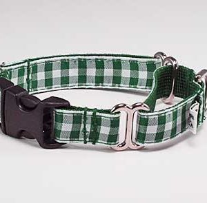 Green Gingham Buckle Martingale Dog Collar