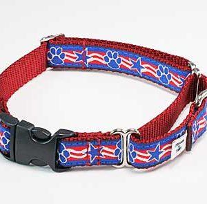 Stars & Paws Buckle Martingale Dog Collar