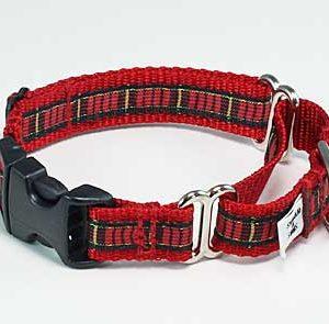 Tartan Clan Plaid Buckle Martingale Dog Collar