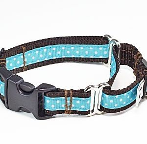 Tiffany Blue Chocolate Buckle Martingale Dog collar