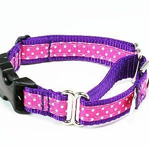 Sunrise Polka Dot Pink Buckle Martingale Dog Collar