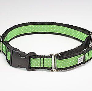 Margarita Preppy Buckle Martingale Dog Collar
